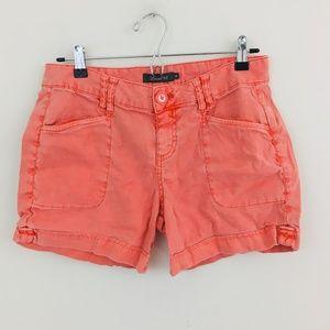 Level 99 Anthropologie Linen Blend Shorts
